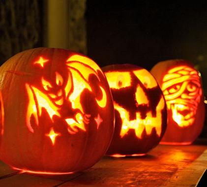 pumpkin picture