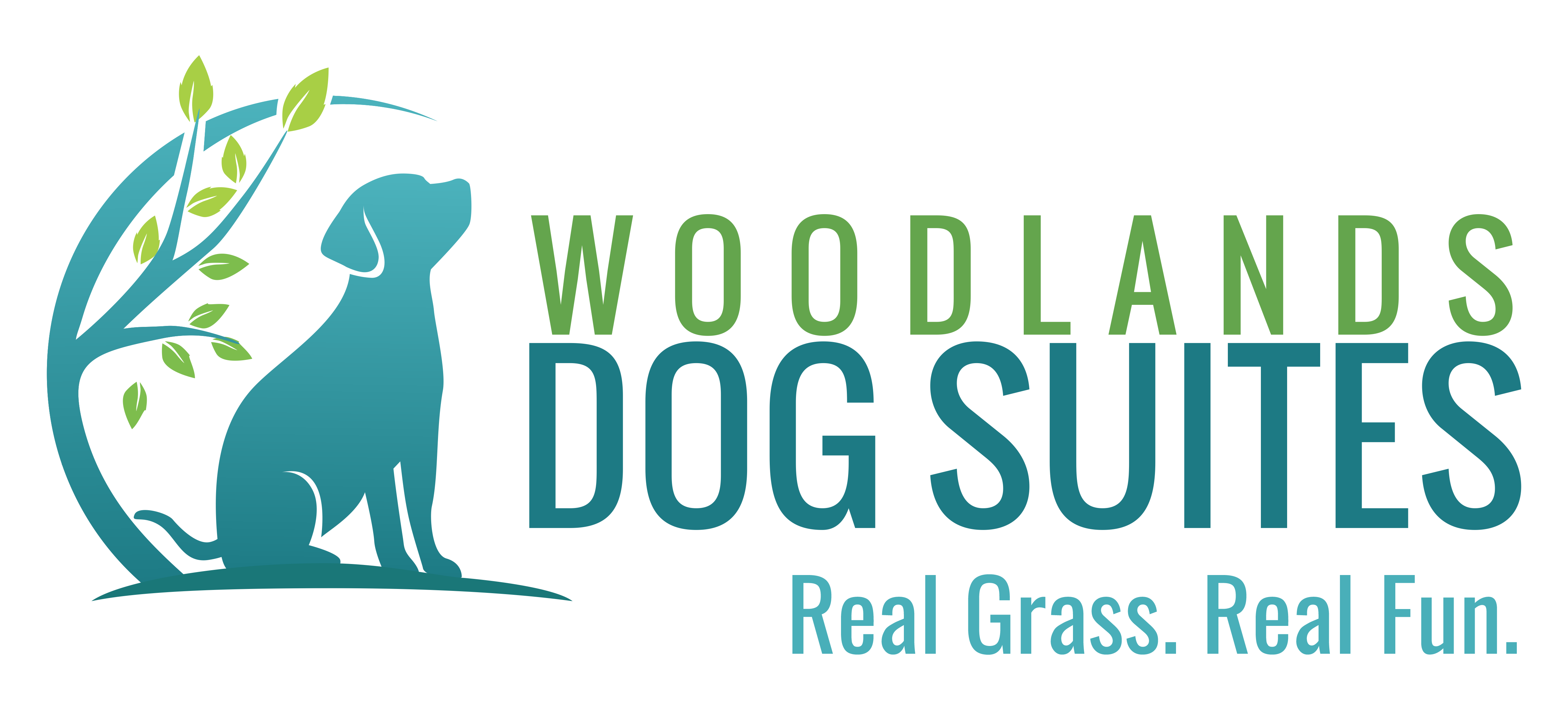 Woodlands Dog Suites