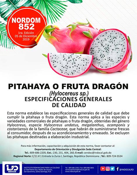 NORDOM-852-PATAHAYA-O-FRUTA-DRAGÓN