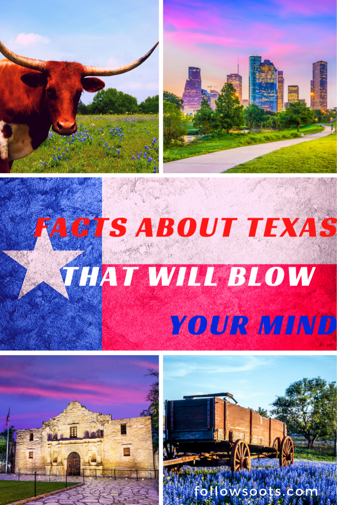 Cool Facts About Texas