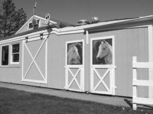 boardy barn horses.jpg.eps