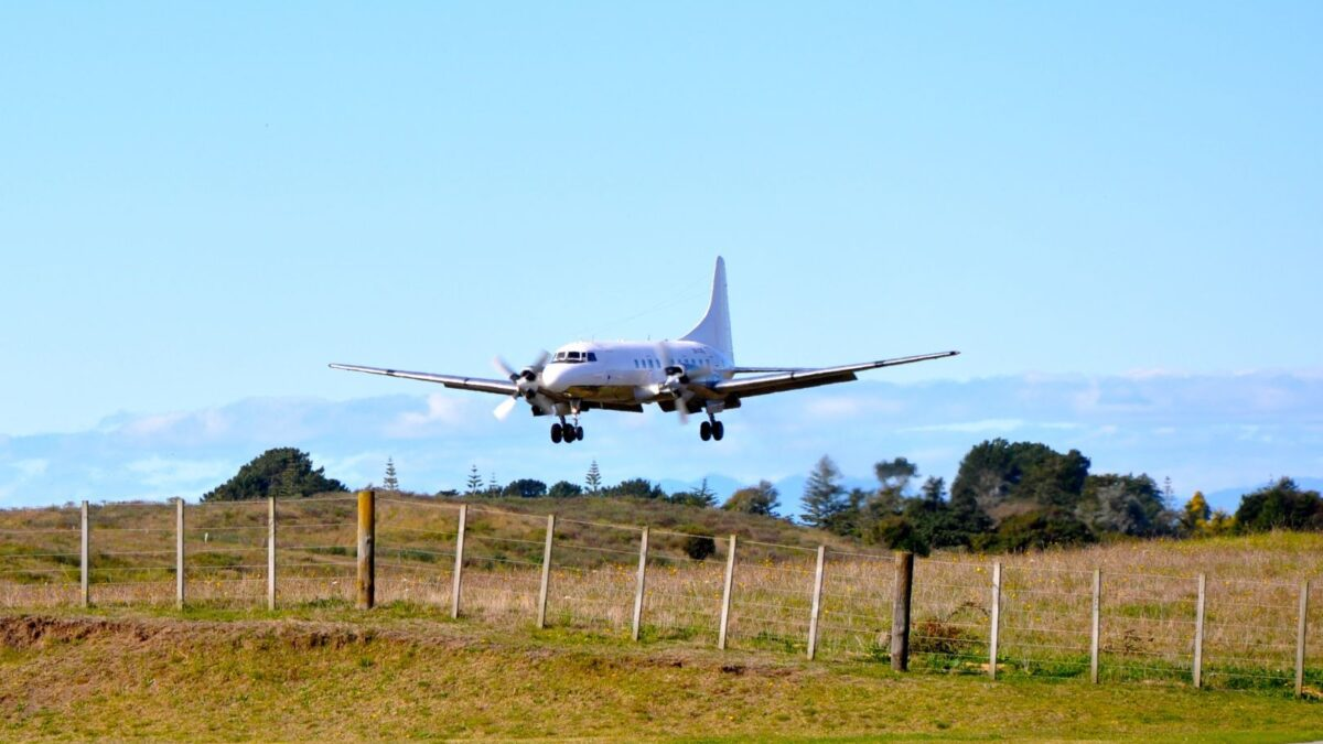 NZ's Air Chathams Sees Growth In Regional Services