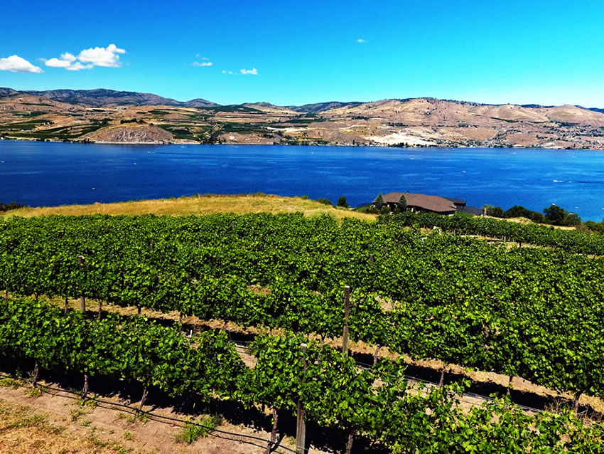 Rocky Pond Winery Our Vineyards Chelan