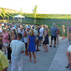 SummerConcerts at The Pond 2017 ~ Emily McIntosh Band