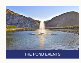 Rocky Pond Winery The Pond Events