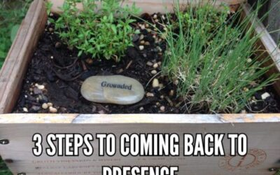 Three Steps to Coming Back to Presence