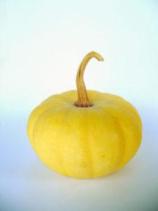 yelllow-pumpkin