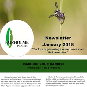 201801 Fairholme Plants newsletter: Garnish your garden. Writer and designer Anna Mouton.