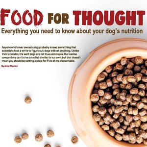 201903 MARKtoe article: Food for thought by Anna Mouton.