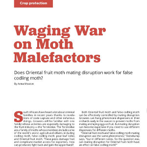 201912 Fresh Quarterly article. Waging war on moth malefactors: does Oriental fruit moth mating disruption work for false codling moth? by Anna Mouton.