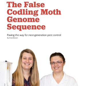 201912 Fresh Quarterly article. The false codling moth genome sequence: paving the way for next generation control by Anna Mouton.