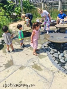 Huntington Library and Botanical Gardens, Things to do in LA with Kids, Pasadena, Kid Activities