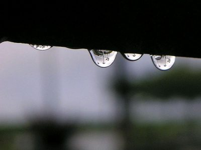 saome-rain-drops-in-the-morning_w725_h544