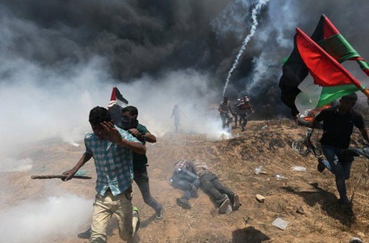 Palestine: International Protection and Trusteeship