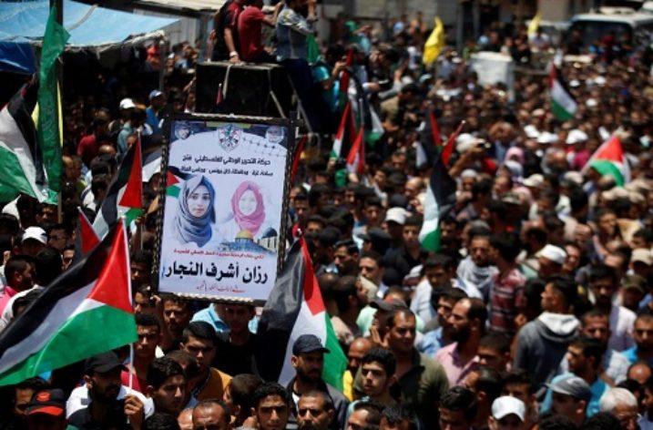 Gaza Rose