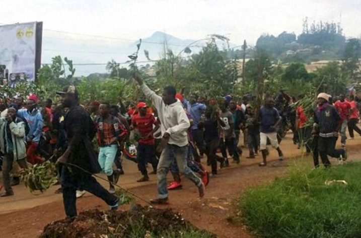 Cameroon: Anglophone regions gripped by deadly violence