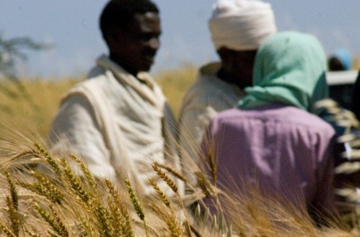 Ethiopia: No dearth of land but a political debacle