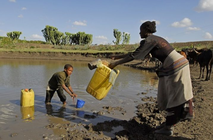 Protecting Ethiopia's wetlands for balancing ecosystems