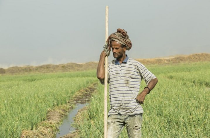 Ethiopia: Increasing productivity via irrigation