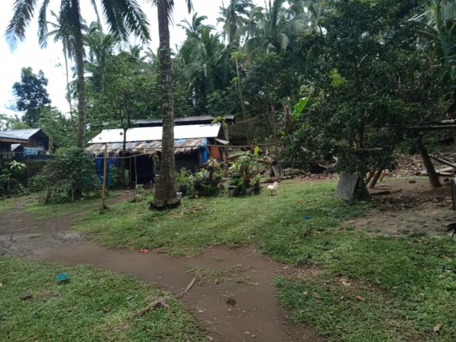 Farm-lot-for-sale-5635-square-meter