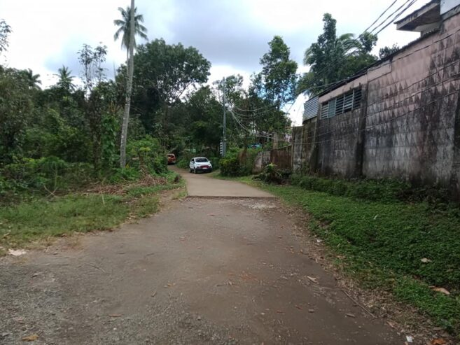 Farm-lot-for-sale-5635-square-meter4