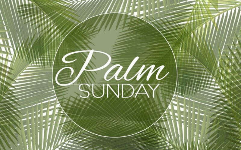 Palm Sunday Through the Eyes of the Sower