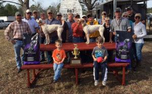 2017 Pat LaBree Memorial Amateur Shooting Dog Classic Winners