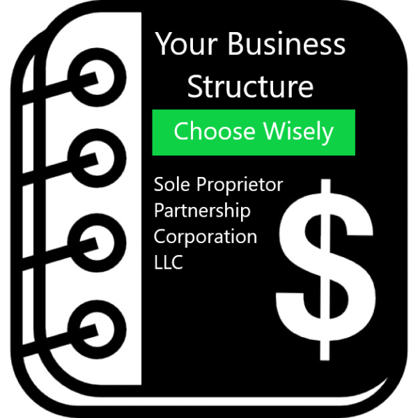TT&P Accounting E-Book - Your Business Structure