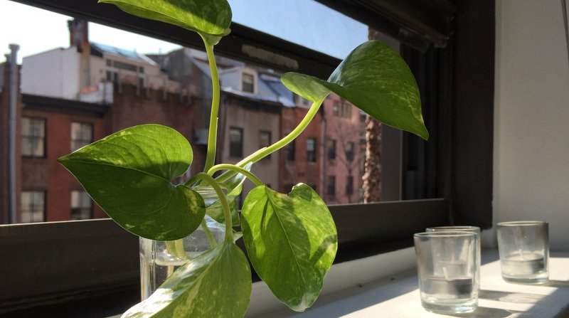 3 Ways To Practice Patience As We Wait For Spring