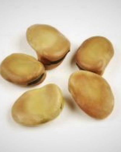 mojo-beans-jpg