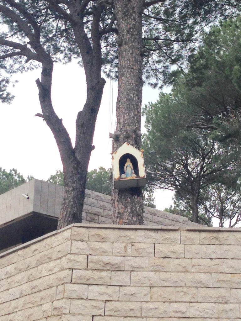 Mini shrine for the Virgin Mary high on a pine tree