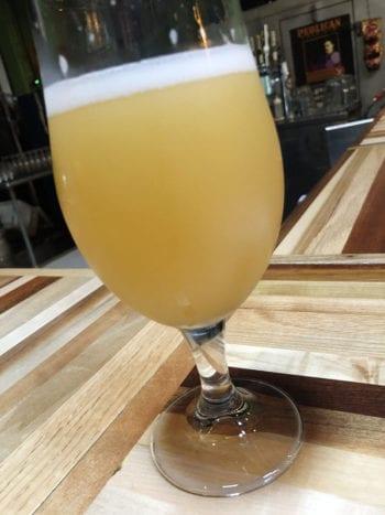 Tastings - Grapefruit Revolution - Shades Brewing