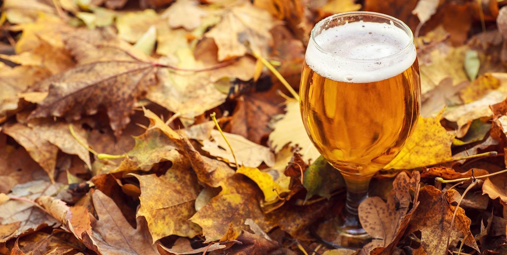 Fall Beers - Utah Beer News - Featured