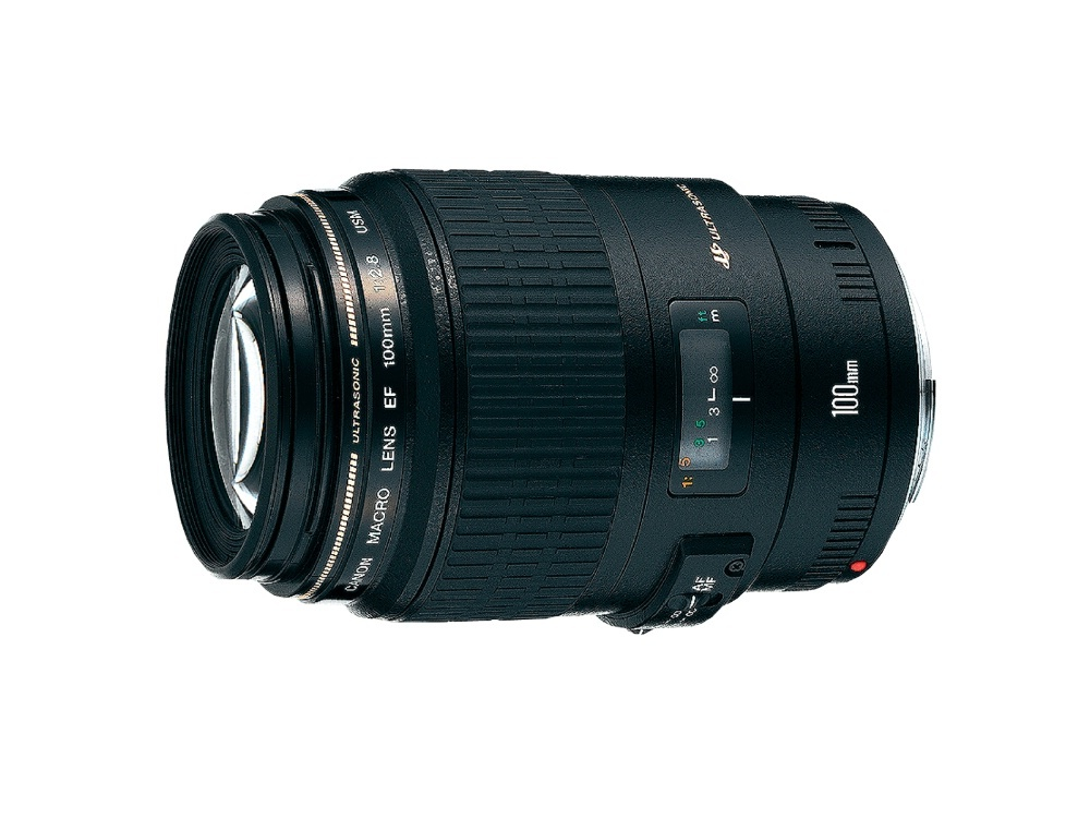 Canon EF 100mm f/2.8L Macro IS USM Prime Lens Great for