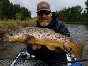 Brown Trout Fly Fishing on Rock Creek
