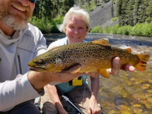 Rock Creek Brown Trout Fly Fishing