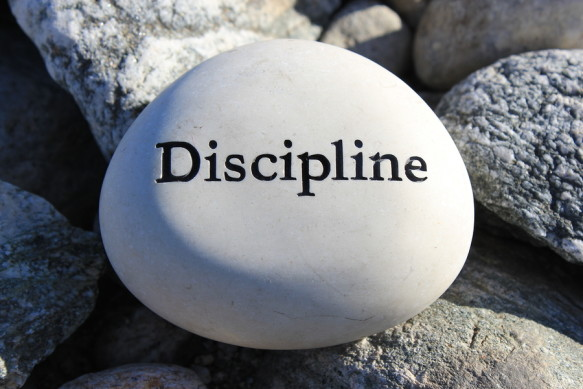 Positive reinforcement word Discipline engrained in a rock