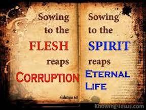 Fleshly Deeds & Spirit Fruit