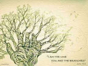 He is the D'Vine You are D'Branches