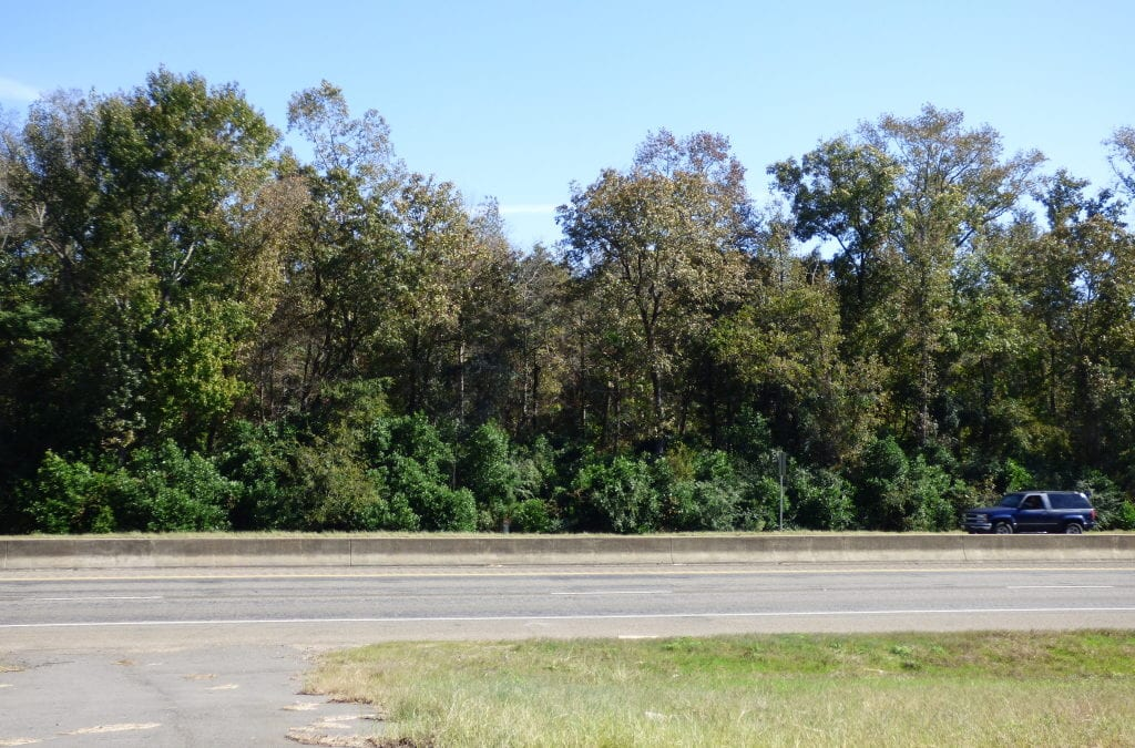 STALLINGS DR – 2.14 ACRES – $45,000 – MLS#2181001 & 2181002