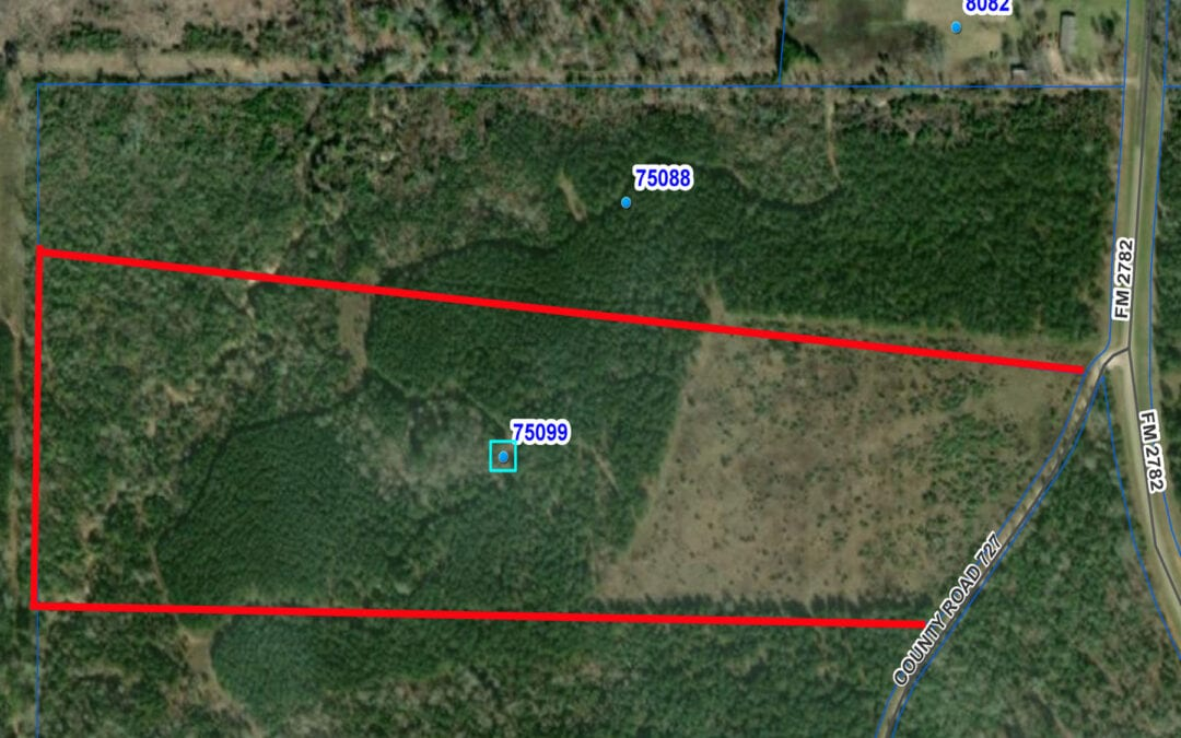 CR 727- 40 ACRES – $200,000- MLS#2195226