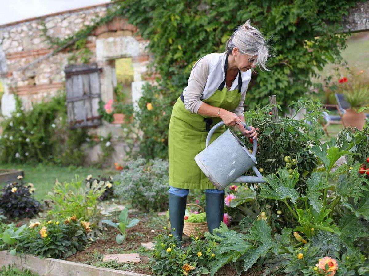 gardening-1200x900.jpg