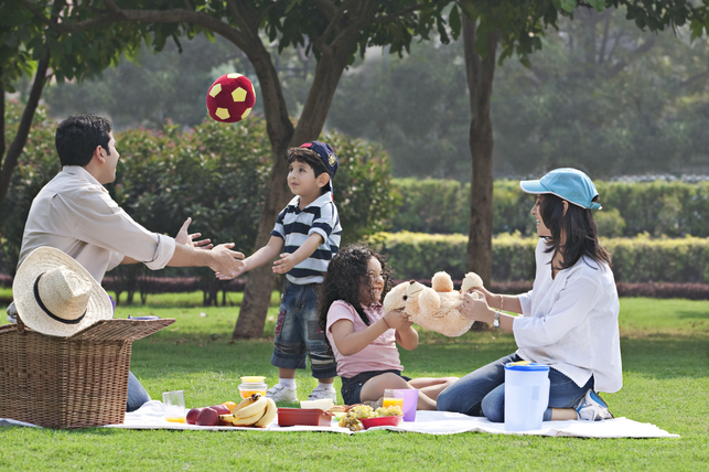 family picnic at the park 2