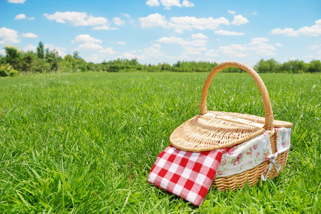 picnic basket in a field of grass 2