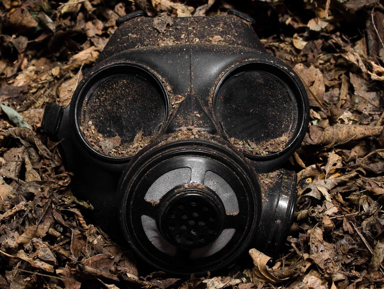 toxic metals
