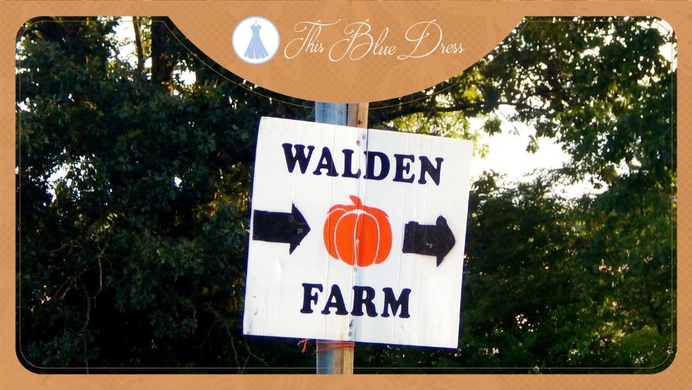 Walden Farm Review
