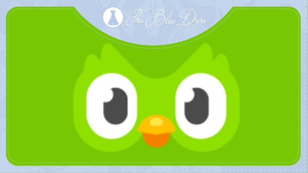 Duolingo app image
