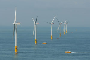 New Offshore Wind Farm Not Inhibiting Marine Life