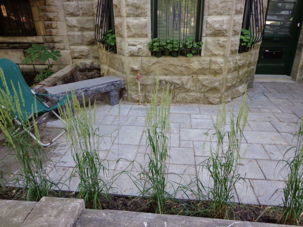 Pavé uni Montréal avec un banc en pierre naturel
