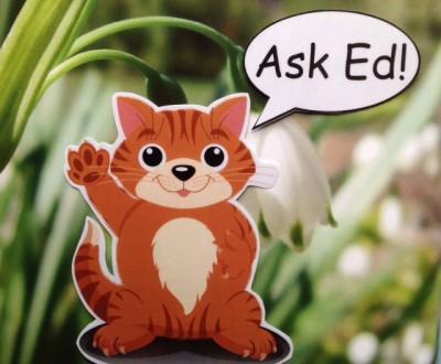 Ask Ed!